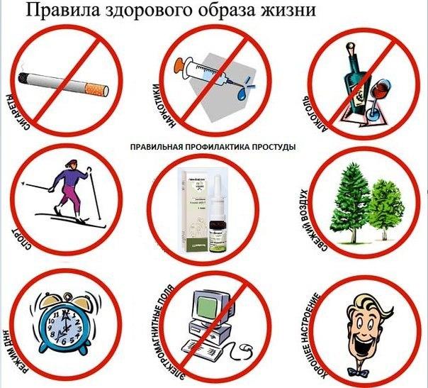 воз здоровый образ жизни факторы