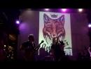Royal Fox День Сурка Конструктор практик Live