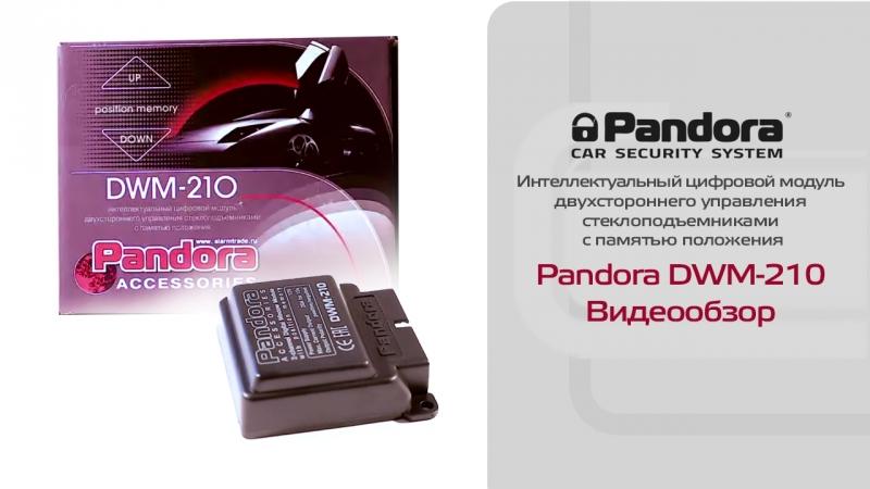 Pandora DWM-210: обзор модуля интеллектуального двухстороннего управления стеклоподъемниками Pandora DWM-210