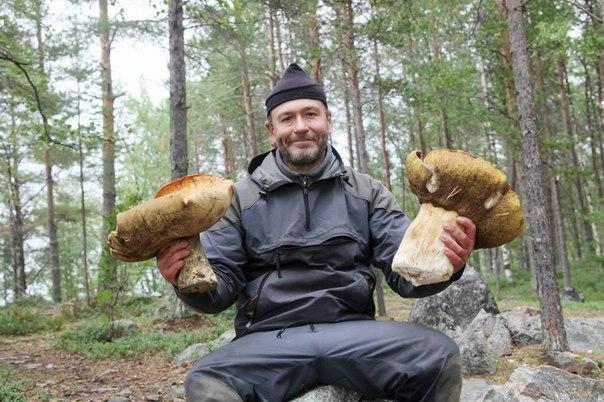 Skitalets.ru - форумы для