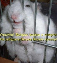 Виктор Крыворотый, 5 декабря 1995, Харьков, id202747135