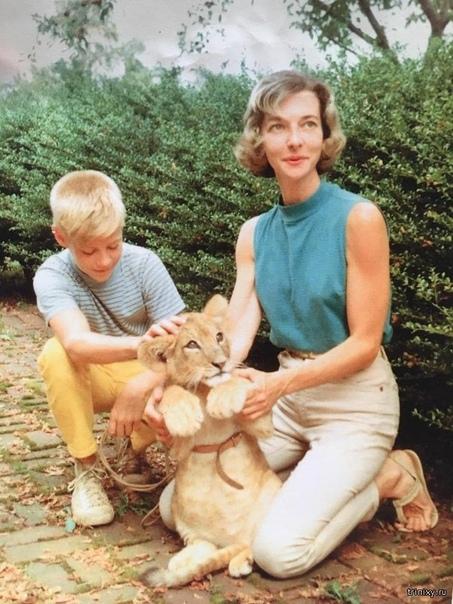 Крутые снимки из молодости родителей и родственников. Конечно же, наши родители, дедушки и бабушки когда-то были молодыми, а их жизнь порой была даже гораздо интереснее, чем наша. Пользователи