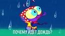 ПочеМуха - Почему идет дождь? - развивающий мультик для детей