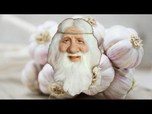 Чесночная Настойка для Чистки Сосудов Рецепт