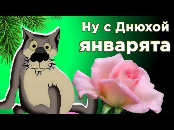 С Днем рождения в ЯНВАРЕ ! Смешное поздравление от ВОЛКА. Мирпоздравлений