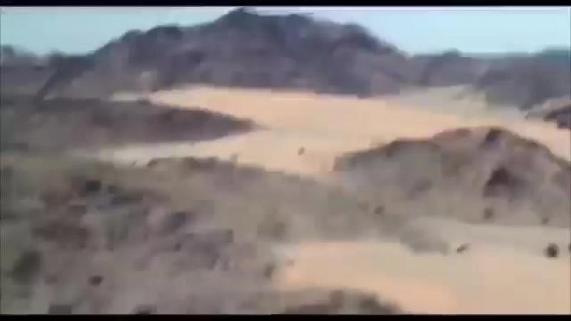 Farruh Soipov Umra haj safarida