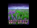 WIFIKID - CRAFT