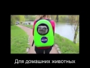 Рюкзак переноска для животных Space Pets