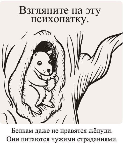 https://pp.vk.me/c543100/v543100411/7a7e/QyJ6p0yJISM.jpg
