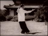 Полный вариант фильма о тайцзицюань 太极拳 50-х в парке