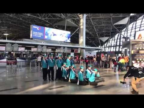 Vortex Dance Airlines во Внуково, Москва, 18 февраля 2019