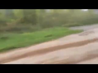 Дебил на ауди против трактора смотреть до конца