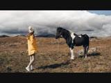 Черногорские лошадки