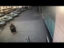Белгородка ищет бабушку укравшую её кошелёк