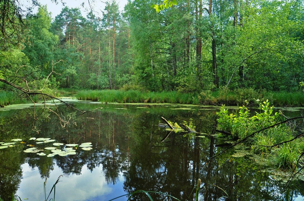 Озеро Шуя
