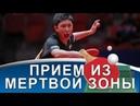 ПРИЕМ ТОП-СПИНА из МЕРТВОЙ ЗОНЫ на примере Ovtcharov, Harimoto, Fan Zhendong
