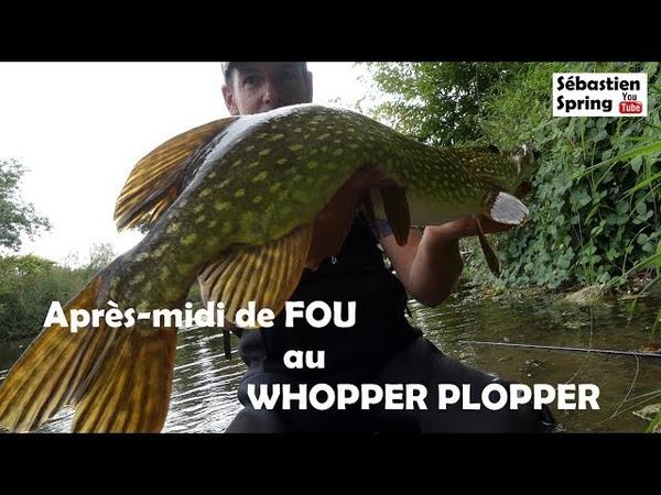 Un après midi de FOLIE! 8 poissons au sec au WHOPPER PLOPPER