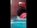 Соня в аквапарке