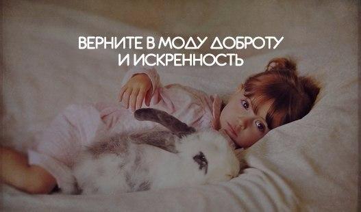 http://cs615716.vk.me/v615716564/53f5/IXs3jSTrahk.jpg