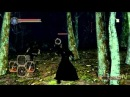 Dark Souls 2: Dual Swordsman Gameplay