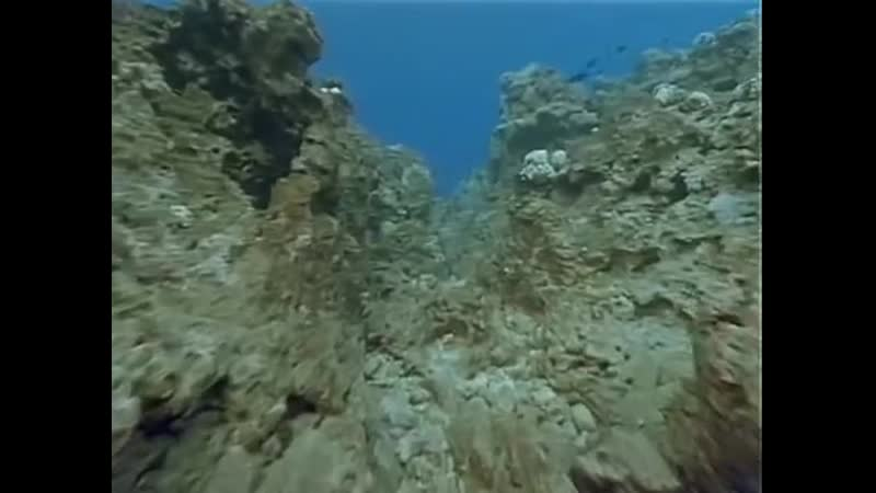 2- Одиссея Жака Кусто - Науру
