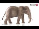 Schleich 14761 Африканский слон, самка