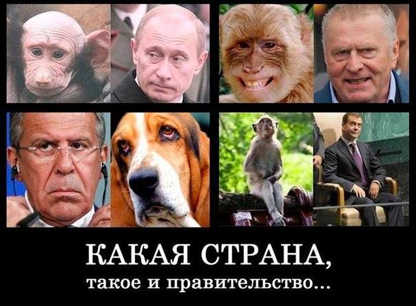 Совбез по-российски, страшилка для Донбасса, цель номер один. Свежие ФОТОжабы от Цензор.НЕТ - Цензор.НЕТ 2972