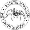 Пауки птицееды Exzotik-home