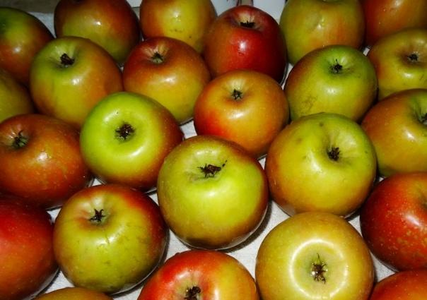 Яблочное варенье без сахара