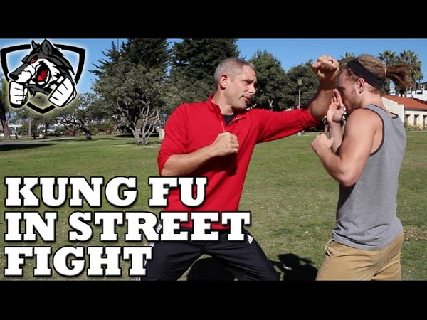 Does Kung Fu Actually Work in a Street Fight MMA