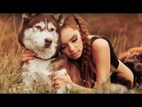 EMOTIONS PAN FLUTE INSTRUMENTAL THE BEST FLUTE MUSIC SPA RELAXING TANTRIC MUSIC MEDITATION