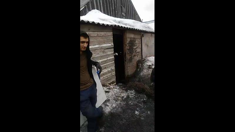Сергей Самарский - Live