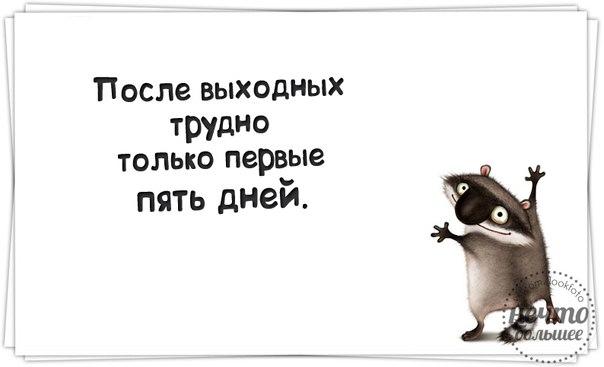 http://cs14113.vk.me/c7005/v7005400/18900/XjQXYB8TaOw.jpg