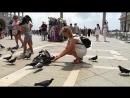 Покормить голубей в Венеции ☑️