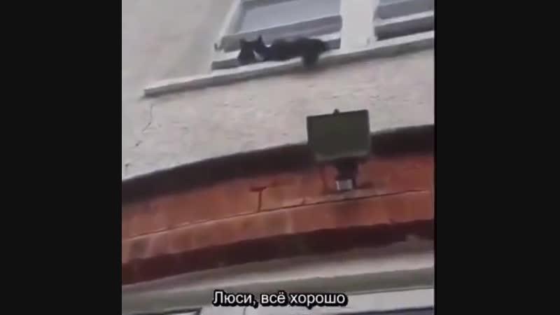 WTF (6 sec)