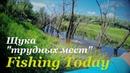 ДИКАЯ ЩУКА в корягах - Fishing Today