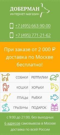 9a5a880b648ee Зоомагазин «Доберман» | ВКонтакте