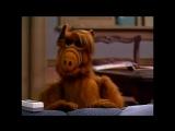 Alf Quote Season 2 Episode 5_Семья