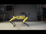 #skibidichallenge от Boston Dynamics