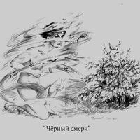 2411342@mail.ru
