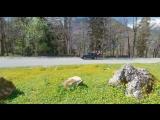 #Рица #Абхазия #Джиппинг Восторг наших гостей вдохновляет на новые путешествия. Большое спасибо ? @borisov_leshka