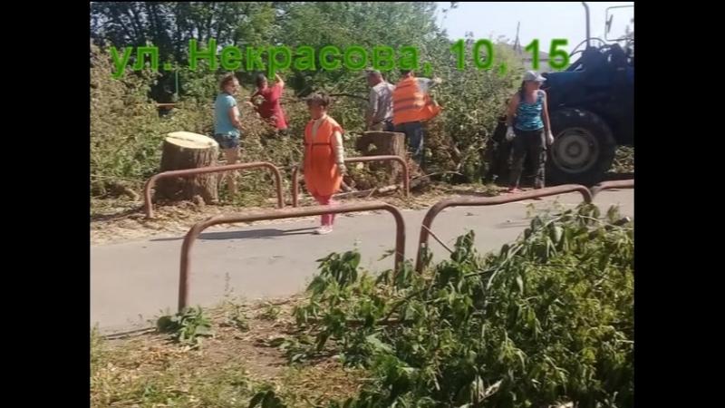 Вывоз веток после опиловки в деревне Ратчино