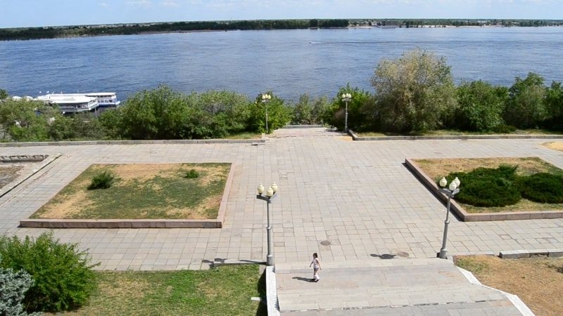 Волга и Розовая пони