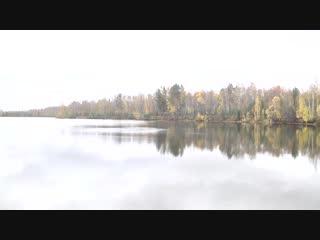 Рыбалка на Морозовском пруду на призы АПЗ. В золотую осень золотые рыбки ловились у Сергея Галихина.