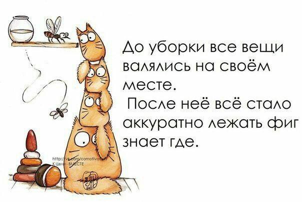 https://pp.userapi.com/c638027/v638027093/43ad4/BvaCMfTNv50.jpg