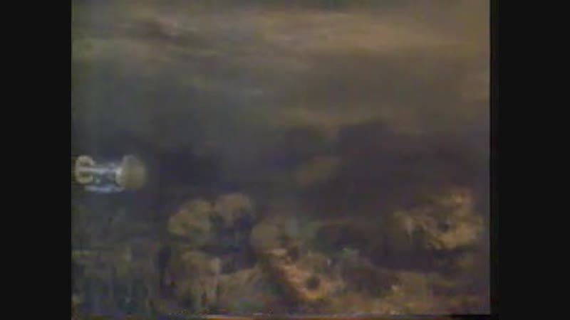 Stingray - Pink Ice 1-3
