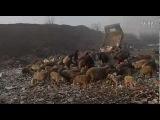 纪录片:垃圾围城 王久良 (Beijing Besieged by Waste)