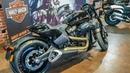 Harley-Davidson FXDR.Теперь ты можешь наказывать на чоппере.