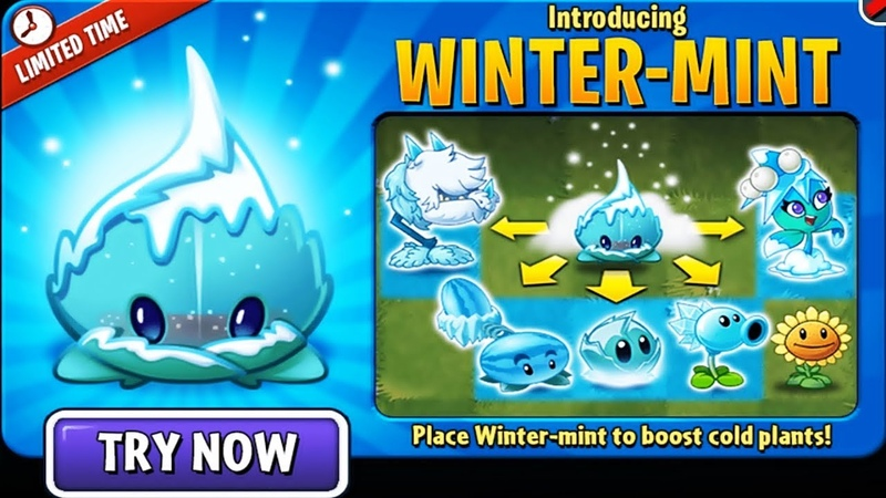 Place Winter-mint to Boosts all cold plants! in Plants vs. Zombies 2: Gameplay 2018
