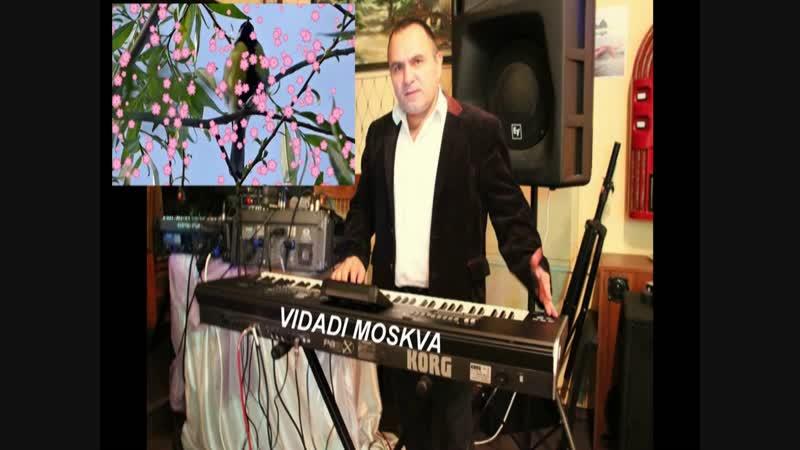 SARI BULBUL..VIDADI MOSKVA
